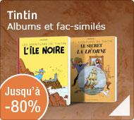 Tintin : jusqu'à -80% Albums et fac-similés