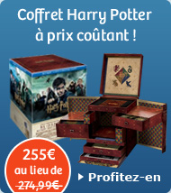 Coffret Harry Potter &agrave; prix co&ucirc;tant