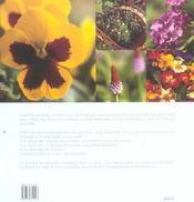 Les Pensees, Les Violettes Et Les Primeveres - 4ème de couverture - Format classique