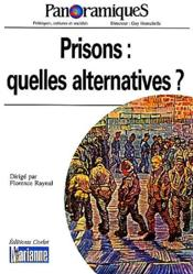 REVUE PANORAMIQUES N.45 ; prisons : quelles alternatives ? - Couverture - Format classique