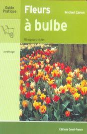 Fleurs à bulbe - Intérieur - Format classique