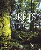 Forêts - Intérieur - Format classique