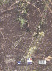 Solitaires Et Nomades - 4ème de couverture - Format classique