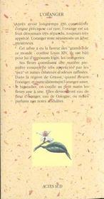 L'Oranger - 4ème de couverture - Format classique
