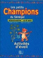 Activites d'eveil, maternelle 5/6 ans, grande section - Couverture - Format classique