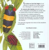 Le royaume des insectes - 4ème de couverture - Format classique