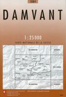Damvant - Couverture - Format classique