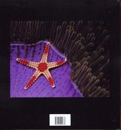 Merveille Du Monde Sous-Marin - 4ème de couverture - Format classique