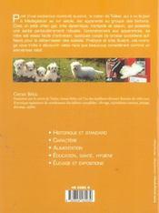 Coton De Tulear (Le) - 4ème de couverture - Format classique