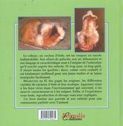 J'élève... mon cochon d'Inde - 4ème de couverture - Format classique