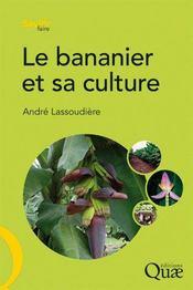 Le bananier et sa culture - Couverture - Format classique