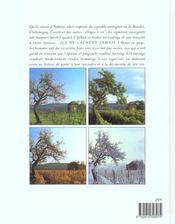Cotes d'auvergne ; renaissance d'un vignoble - 4ème de couverture - Format classique