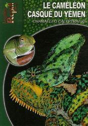 Le caméléon casqué du yémen - Intérieur - Format classique