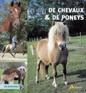 Races de chevaux et poneys (les) - Couverture - Format classique