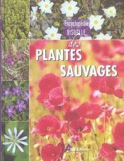 Encyclopédie visuelle des plantes sauvages - Intérieur - Format classique