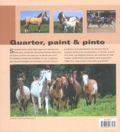 Quarter Et Paint - 4ème de couverture - Format classique