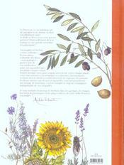 Herbier de provence ; itinéraire d'une aquarelliste - 4ème de couverture - Format classique