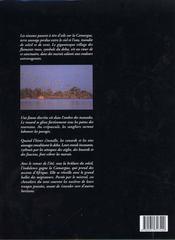 Camargue - 4ème de couverture - Format classique