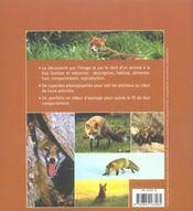 Le renard - 4ème de couverture - Format classique