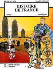 Histoire de France t.1 ; les origines - Intérieur - Format classique