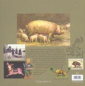 Mémoires des cochons - 4ème de couverture - Format classique