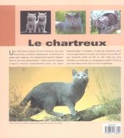 Chartreux - 4ème de couverture - Format classique