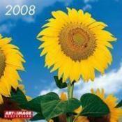 08 Sunflowers Art & Images 30x30 - Couverture - Format classique
