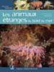 Animaux étranges en bord de mer - Intérieur - Format classique