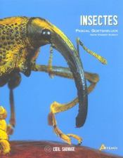 Insectes  - Pascal Goetgheluck