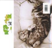 Mon chat, la vie et moi - 4ème de couverture - Format classique