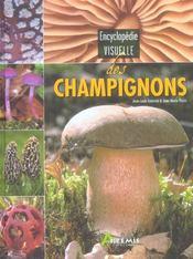 Encyclopédie visuelle des champignons - Intérieur - Format classique