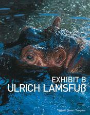 Exhibit-E Ulrich Lamsfub - Intérieur - Format classique