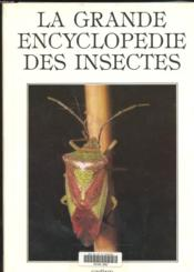 Insectes  - Collectif
