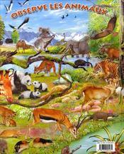 Observe les animaux et leurs records - 4ème de couverture - Format classique
