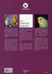 Les perruches ondulées - 4ème de couverture - Format classique