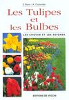 Tulipes Et Plantes A Bulbes