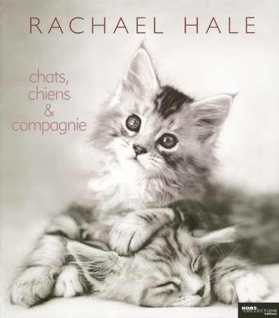 livre chats chiens et compagnie rachael hale acheter occasion 20 10 2005. Black Bedroom Furniture Sets. Home Design Ideas