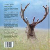 A la gloire de mon cerf - 4ème de couverture - Format classique