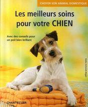 Choyer son animal domestique ; les meilleurs soins pour votre chien - Intérieur - Format classique