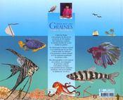 Créer avec des graines mer et poissons - 4ème de couverture - Format classique