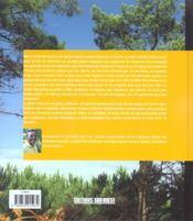 Les grives - 4ème de couverture - Format classique