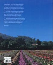 Le Grand Livre De La Rose - 4ème de couverture - Format classique