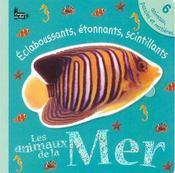 Touche A Tout ; Eclaboussants, Etonnants, Scintillants ; Les Animaux De La Mer - Intérieur - Format classique