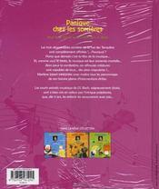 Panique chez les sorcières - 4ème de couverture - Format classique