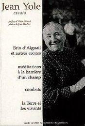 Brins D'Aiguail Et Autres Contes Essais T2 - Intérieur - Format classique