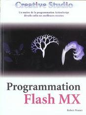 Creative studio : flash mx - Intérieur - Format classique