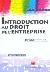 Introduction Droit De L'Entreprise Dpecf Epreuve N 1 - Intérieur - Format classique