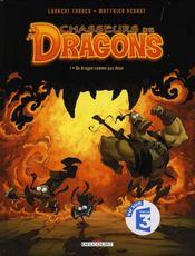 Chasseurs de dragons t.1 ; un dragon comme pas deux - Intérieur - Format classique