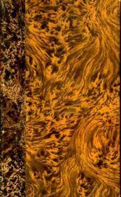 Mémoires pour servir à l'histoire littéraire des dix-sept provinces des Pays-Bas, de la Principauté de Liège et de quelques contrées voisines. - Intérieur - Format classique