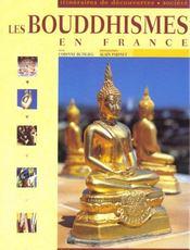 Les Bouddhismes En France - Intérieur - Format classique